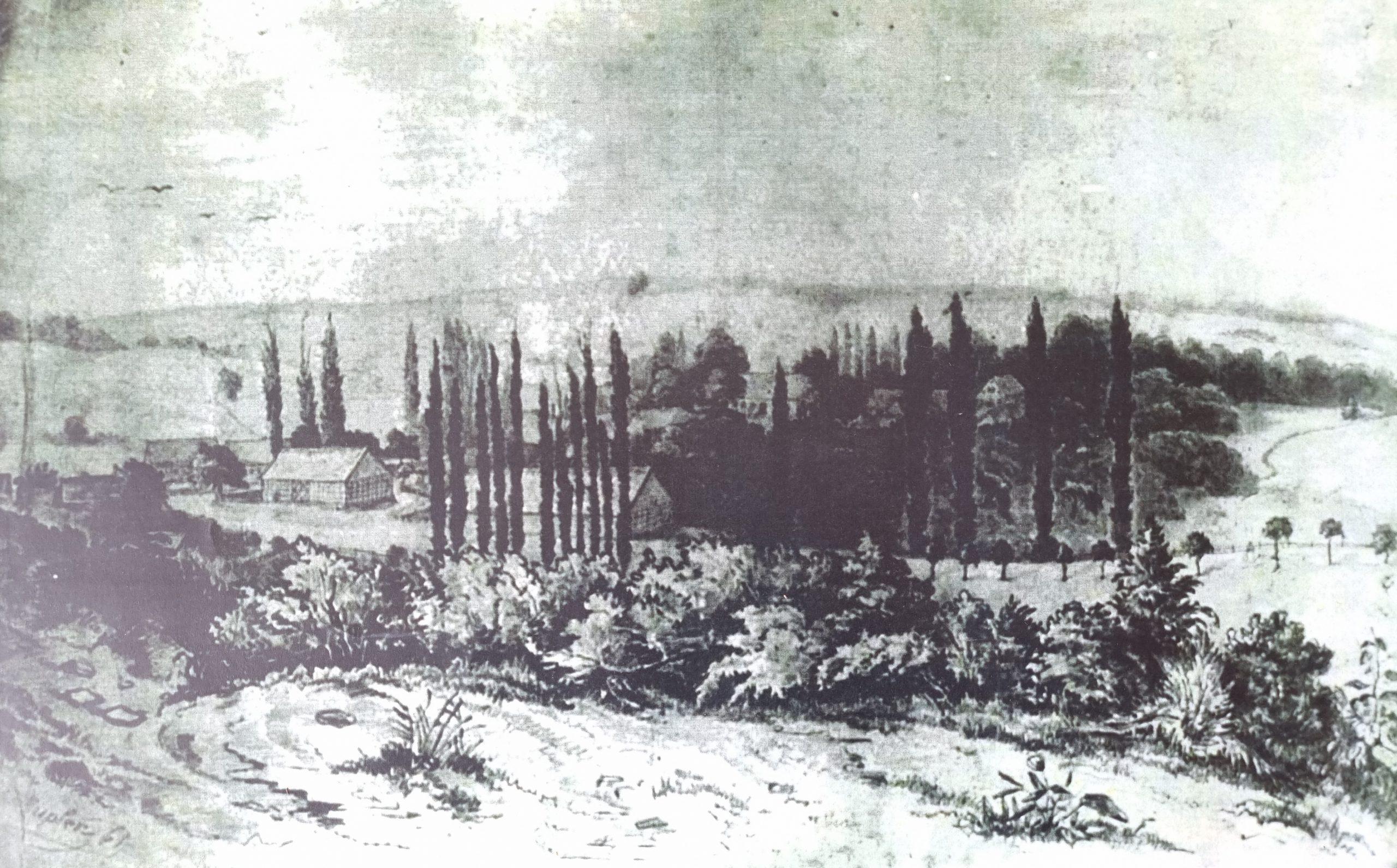 widok ogólny folwarku w Mniszkach ok. poł XIX w.